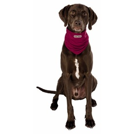 Trixie Insect Shield® Bandana bordeaux